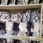 gatos yoamoamigato